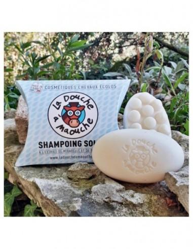 Shampoing solide - La douche à Maouche
