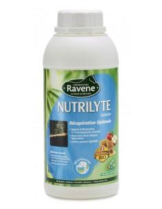 Electrolyte Ravene...